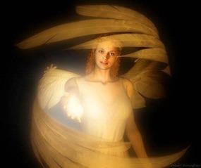 Angeli Custodi CREDO_NEGLI_ANGELI_50_1.jpg (Art. corrente, Pag. 1, Foto evidenza)