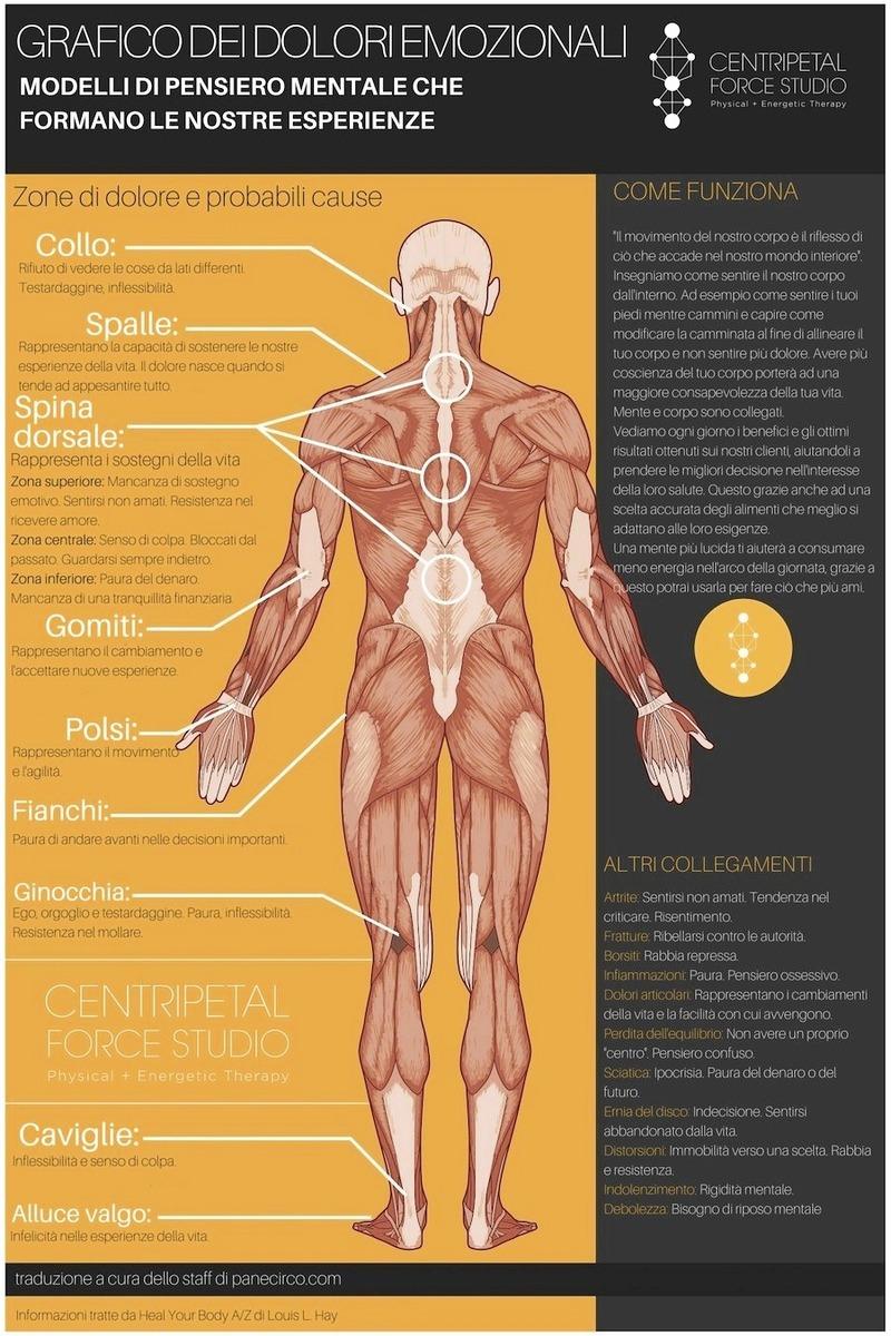 Dolori emozionali: che impatto fisiologico hanno s Zone-di-dolore-e-probabili-cause.jpg (Art. corrente, Pag. 1, Foto ingrandimento)