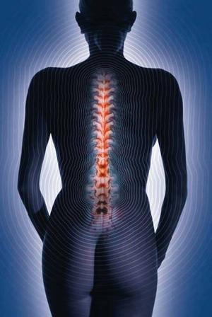 Meditazione: Metti la consapevolezza nella spina donna_schiena_75_1.jpg (Art. corrente, Pag. 1, Foto normale)